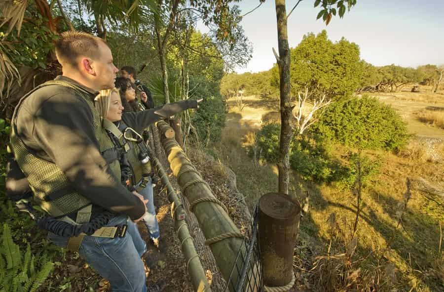 Wild Africa Trek Tour at Animal Kingdom