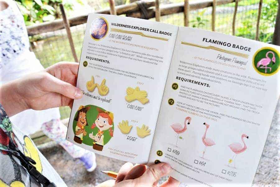 Animal Kingdom FREE Field Journal