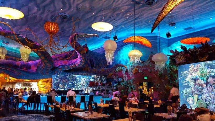 Bar at Disney Springs T-Rex Cafe