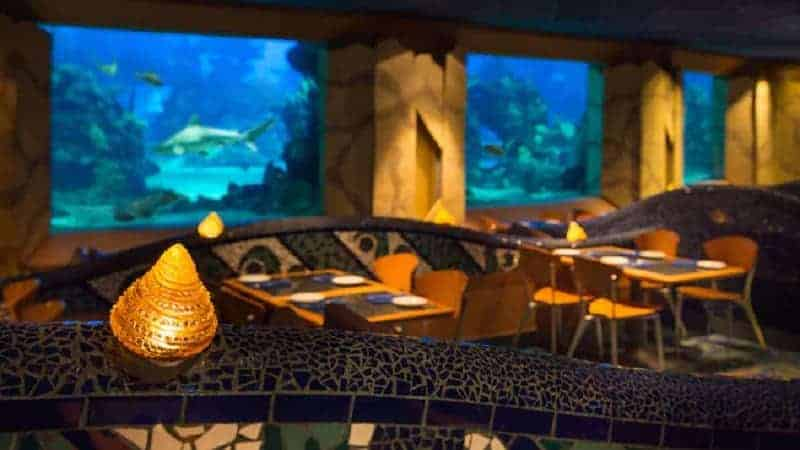 Aquarium at Coral Reef Restaurant