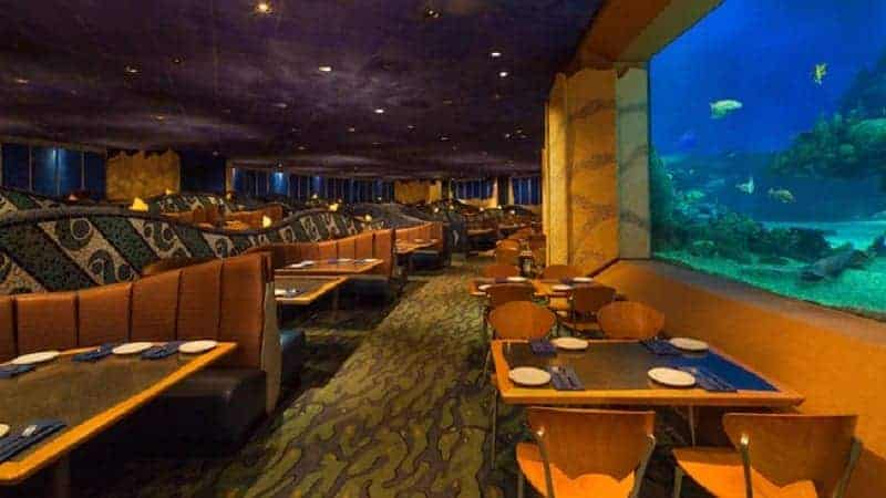 Coral Reef Table near Aquarium