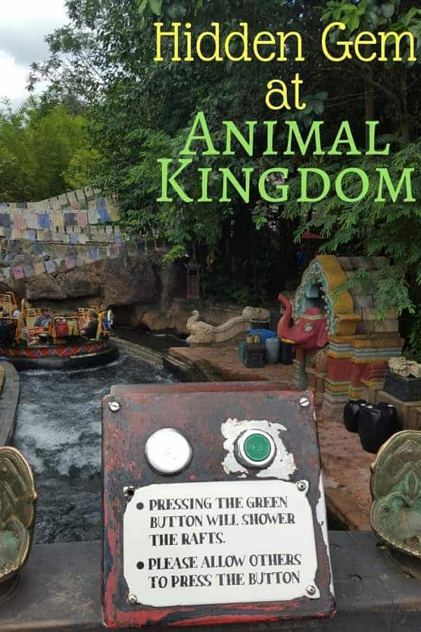 This hidden gem may get you soaked at Animal Kingdom!
