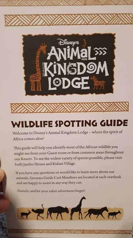 Animal Kingdom Wildlife Spotting Guide