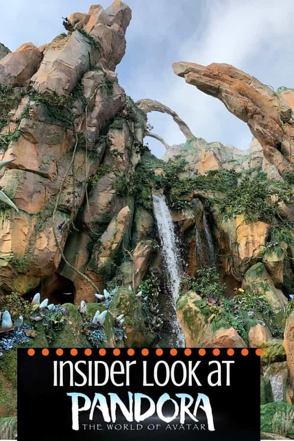 Things to Experience at Pandora World of Avatar