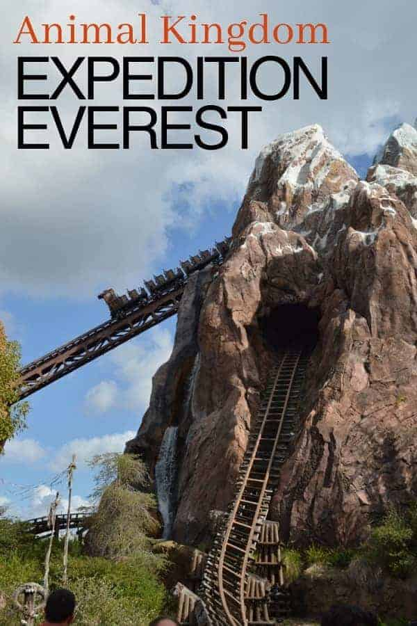 Best Ride at Animal Kingdom: Expedition Everest