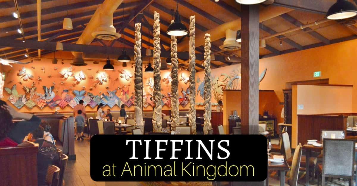 Tiffins in Animal Kingdom