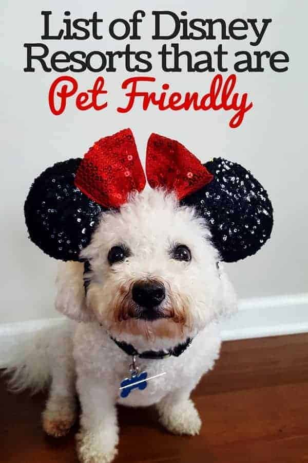 List of Disney Resorts that are Pet Friendly