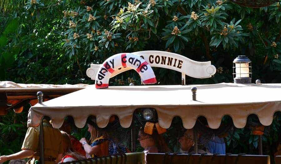 Candy Cane Connie Jungle Cruise