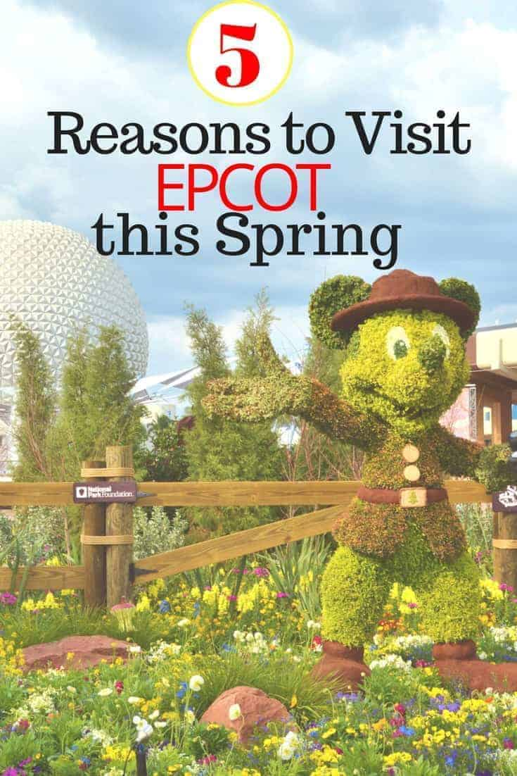 5 Reasons to Visit Epcot this Spring