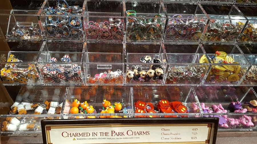 Disney Bracelet Charms: Charmed in the Park in WDW