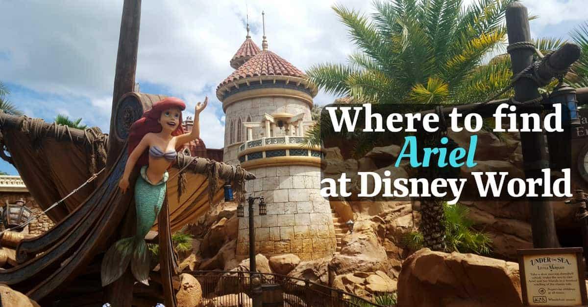 Finding Ariel in Disney World