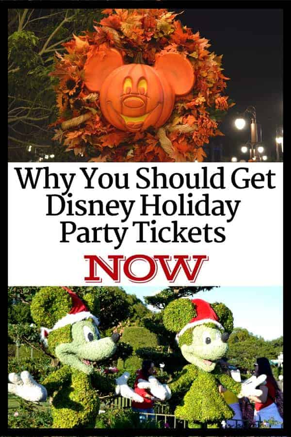 Why You Should Get Discount Disney Holiday Tickets NOW