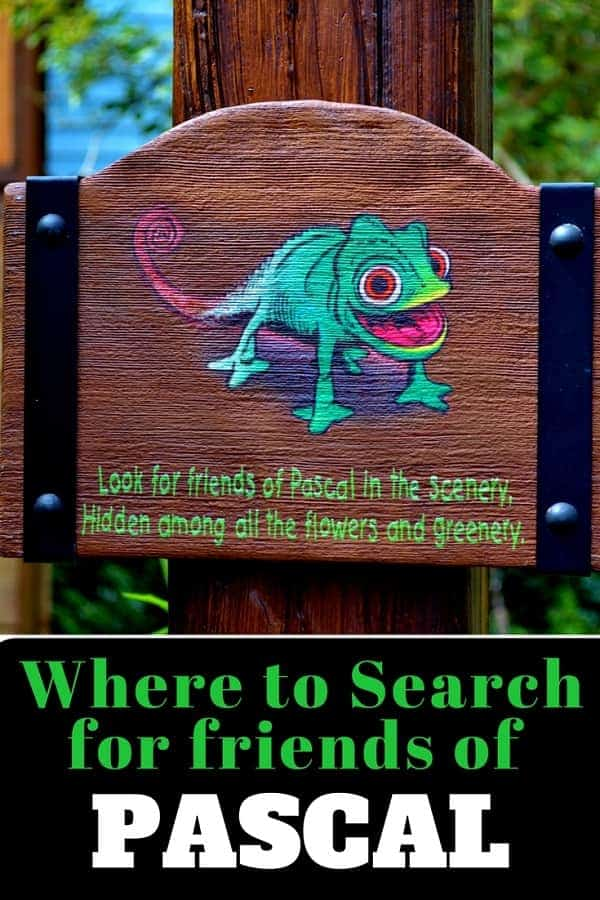 Where to Find Pascal's Friends