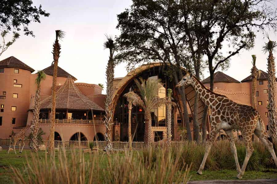 Animal Kingdom Lodge Kidani Village