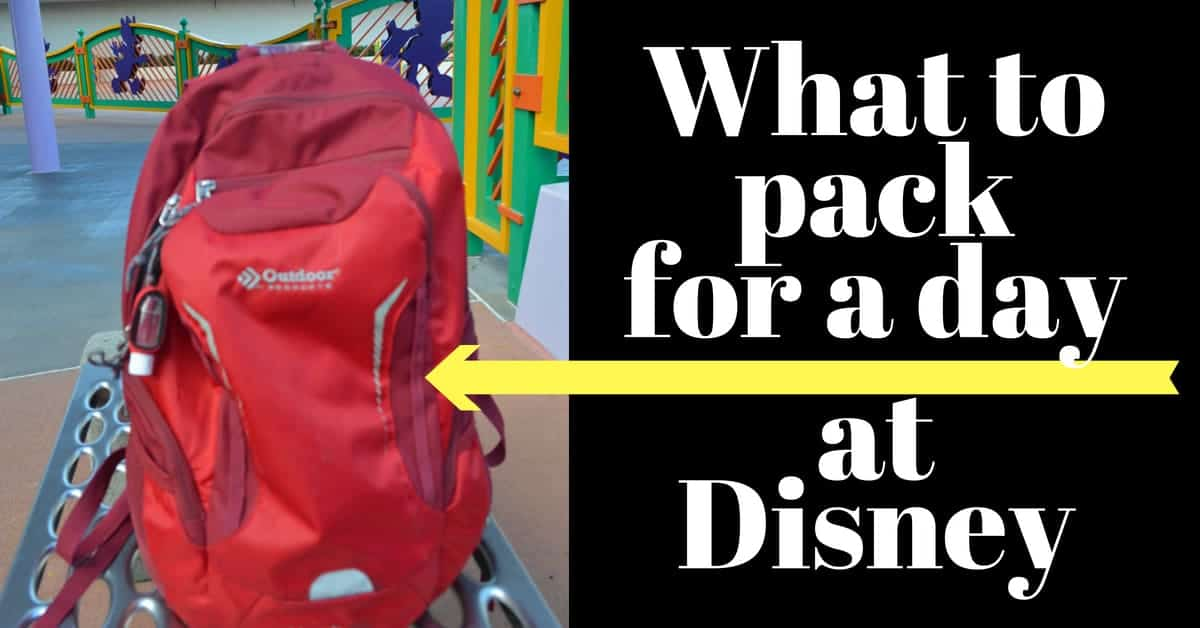 What to Pack for Disney (in your backpack)