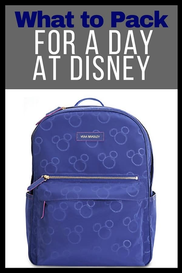 What to Pack for Disney World in your Day Bag