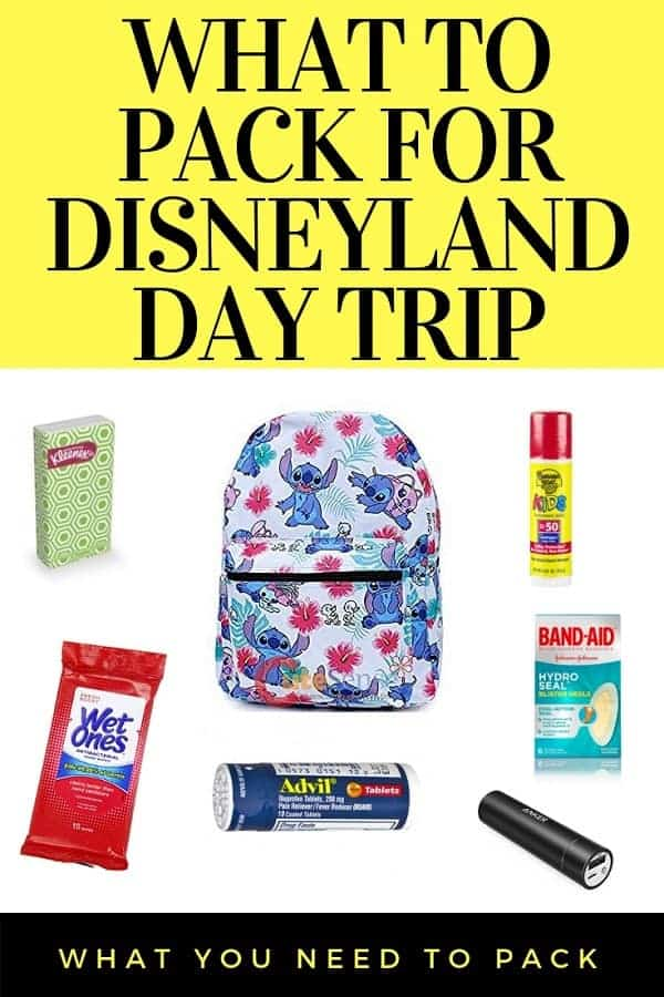 What to Pack for Disneyland Day Trip