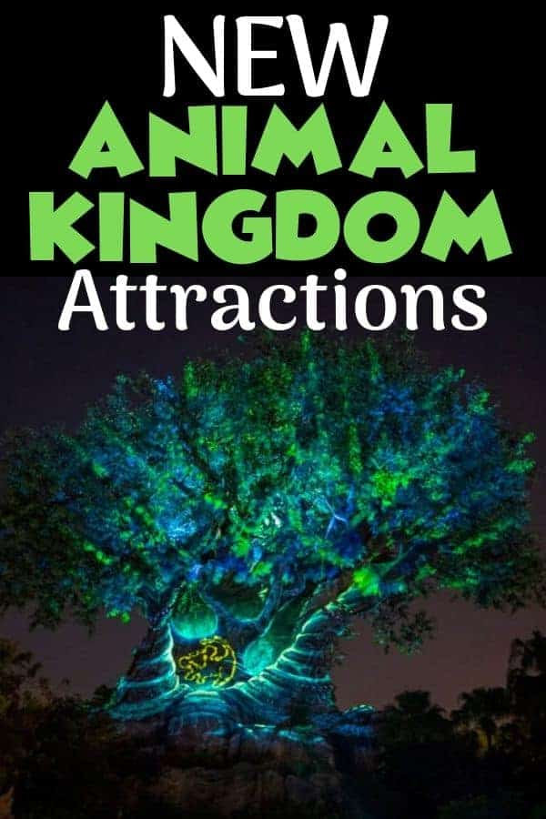 NEW Animal Kingdom Attractions in Disney World
