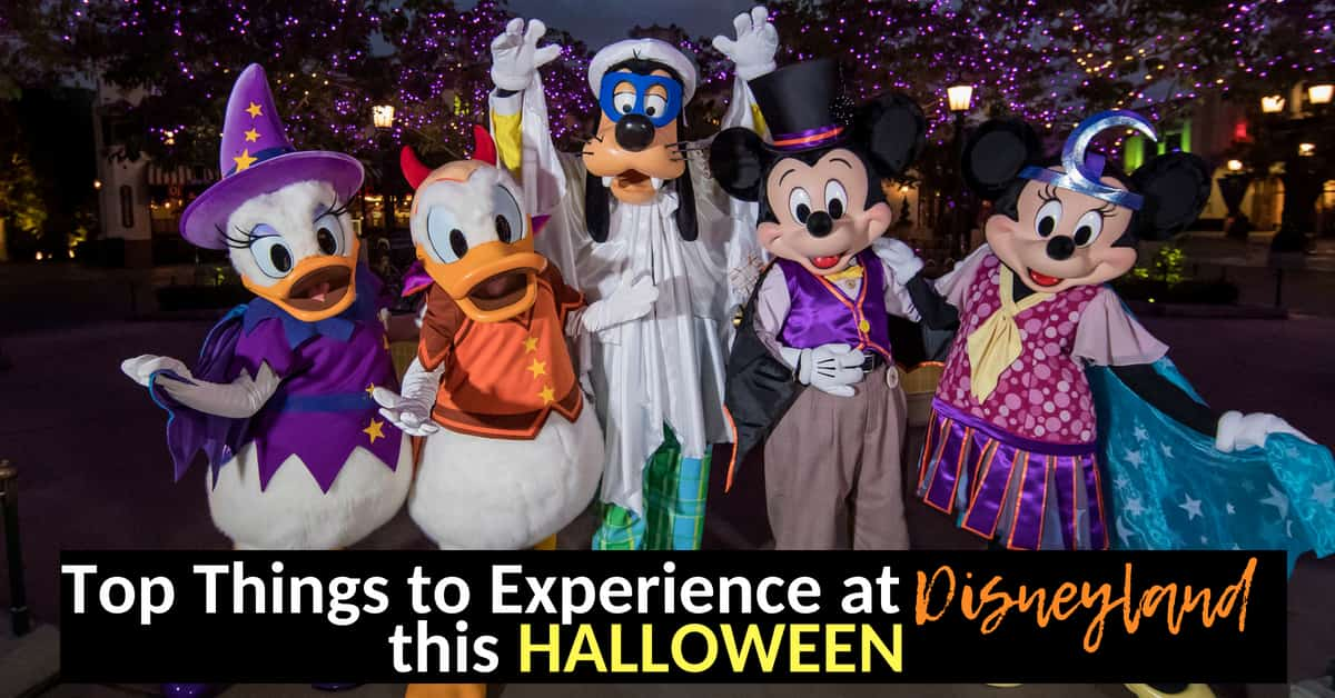 What its like in Disneyland at Halloween