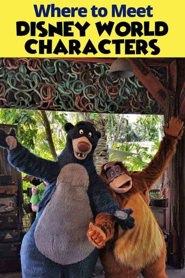 Where to Find Disney World Characters