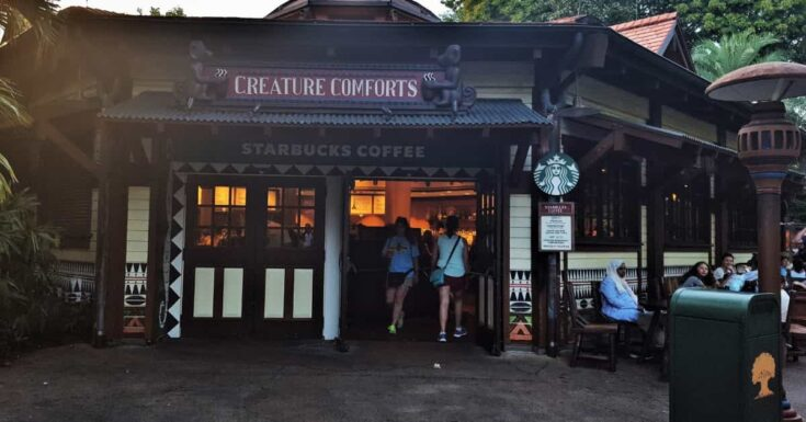 Starbucks in Animal Kingdom