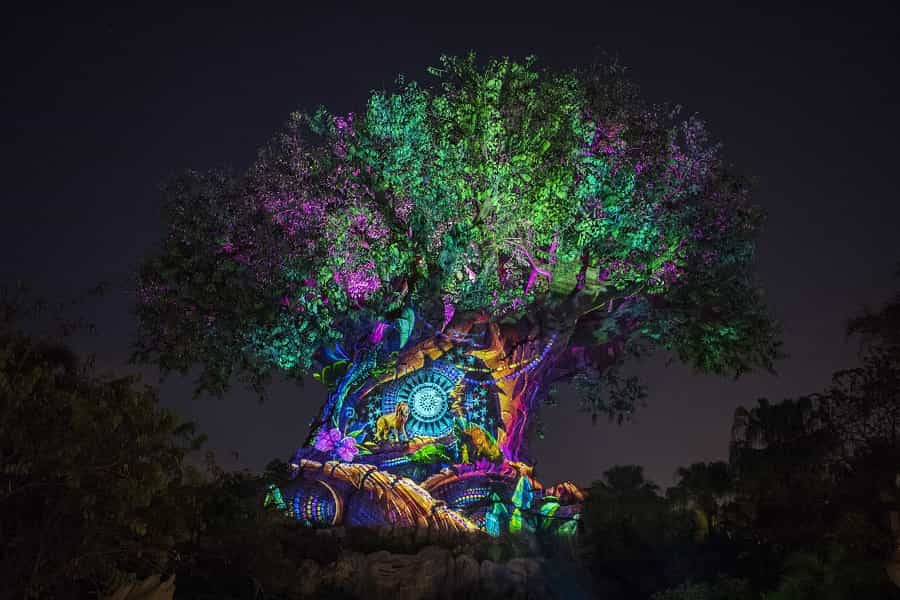 Tree of Life Lion King Theme Show