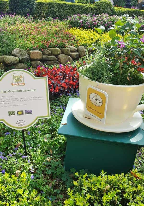 EPCOT Tea Garden