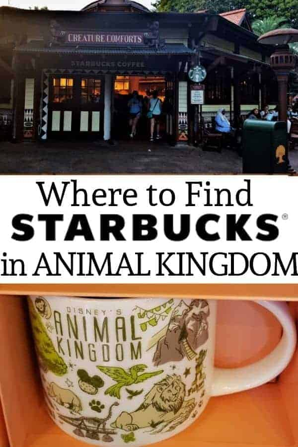 Where to find Starbucks in Animal Kingdom