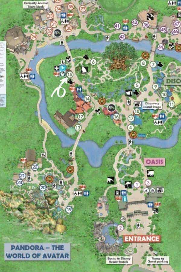 Animal Kingdom Map to Starbucks