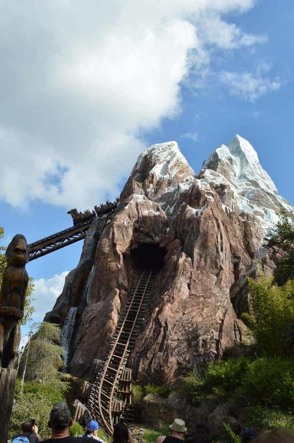 Expedition Everest in Animal Kingdom