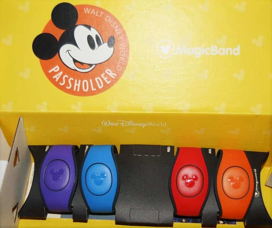 Disney Annual Passholder MagicBands