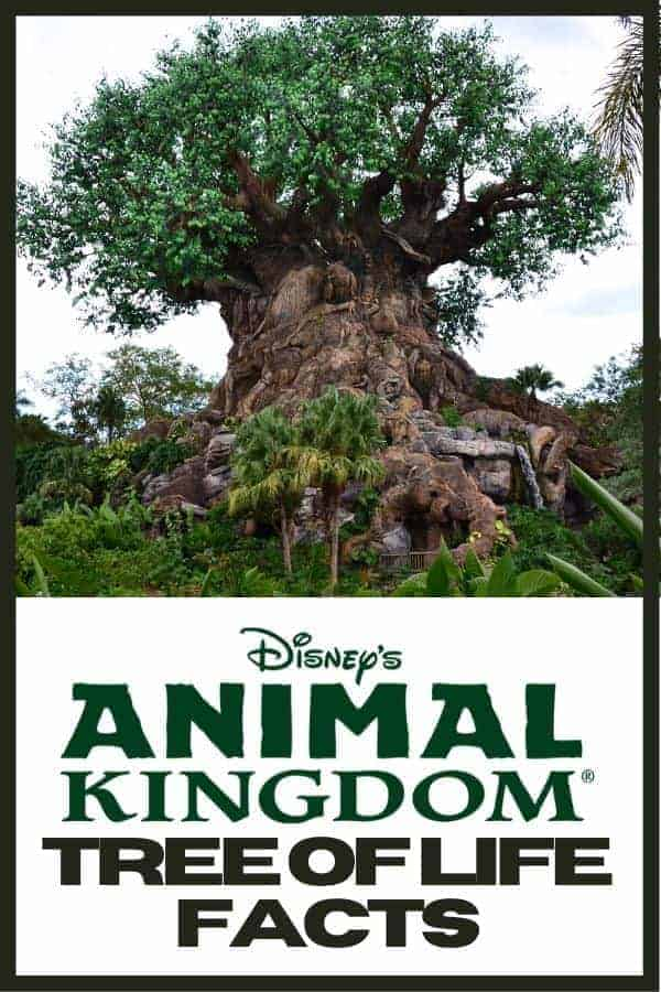 10 Animal Kingdom Tree of Life Facts