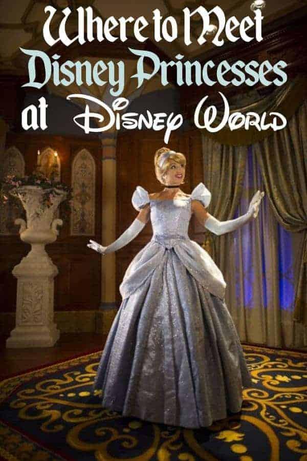 Disney Princesses at Disney World
