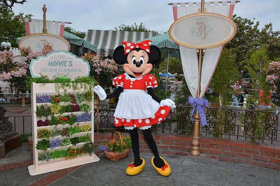 Meeting Minnie Mouse in Disneyland