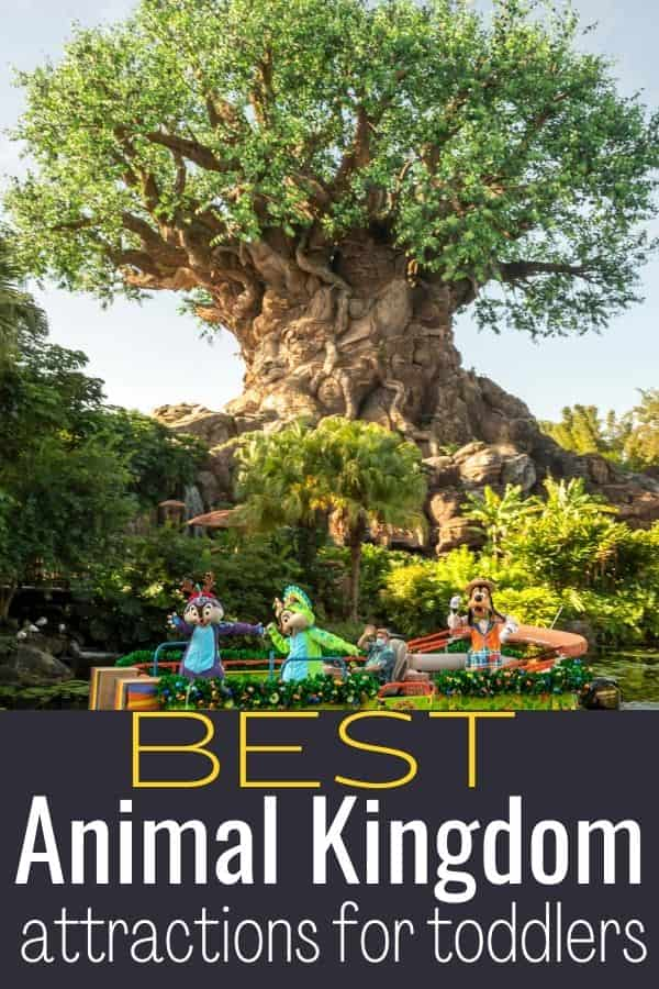Best Animal Kingdom Attractions for Toddlers