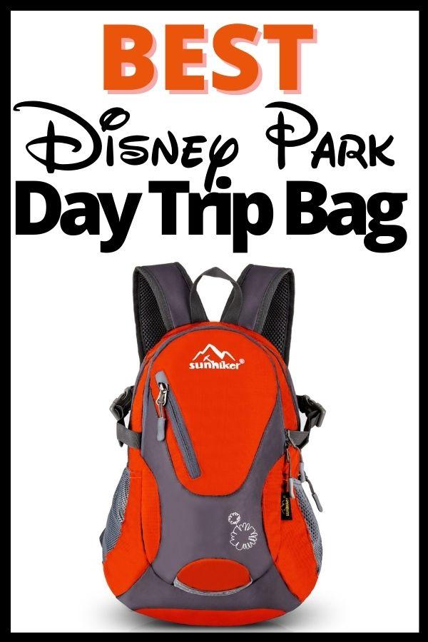 Best Disney Park Bag