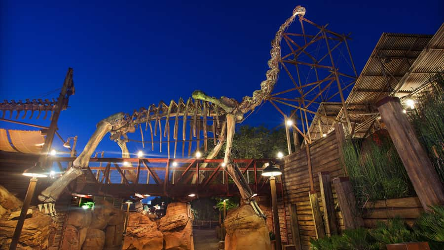 Boneyard in Animal Kingdom Dinoland USA