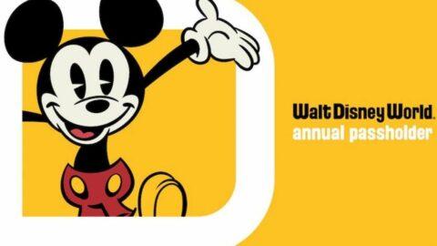NEW Disney World Annual Passholder LOGO