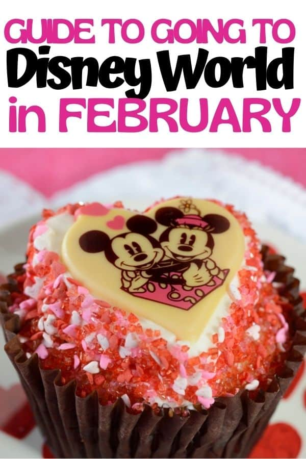 Guide to Going to Disney World in February
