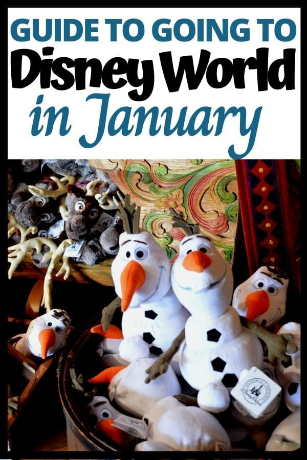 Going to Disney World in January