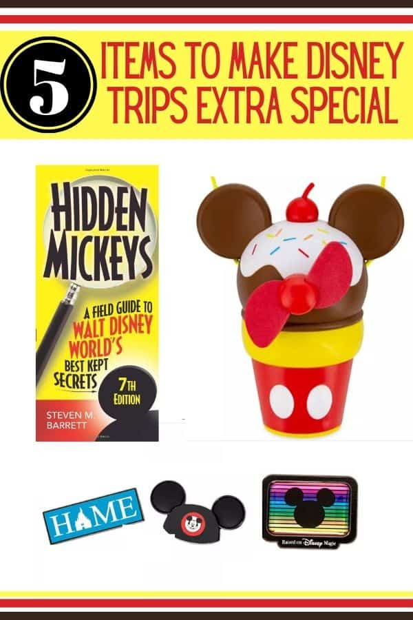 5 Disney Items to Bring to the Park