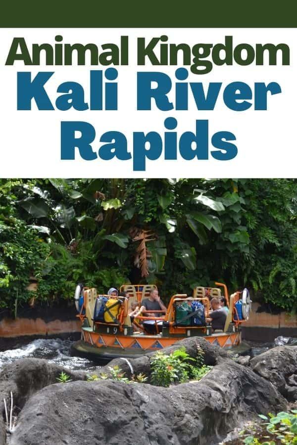 Kali River Rapids Ride in Animal Kingdom