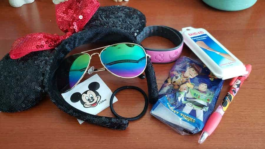 What to Bring to Disney