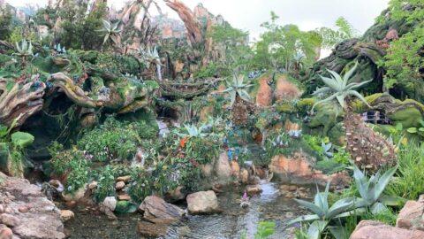 Pandora Valley of Mo'ara