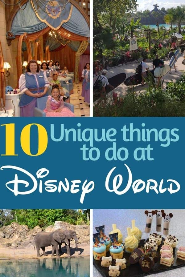 10 Unique Things to do at Disney World