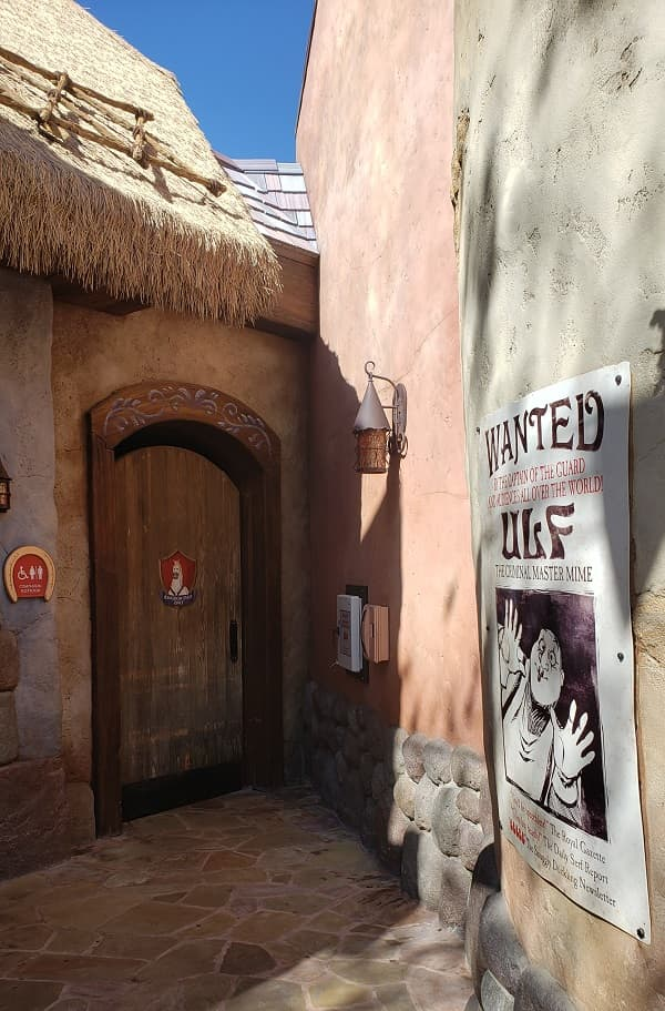 Hidden Features of Rapunzel Village